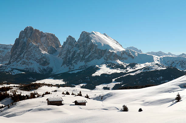 Seiser Alm and the Dolomites in winter Seiser Alm - Alpe di Siusi and Val Gardena (South Tyrol, Italian Alps). Winter in the Dolomites: UNESCO World Natural Heritage.  high seat stock pictures, royalty-free photos & images