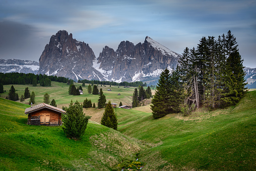 istock Seiser Alm, Dolomites, South Tyrol, Italy, Europe 1163602539