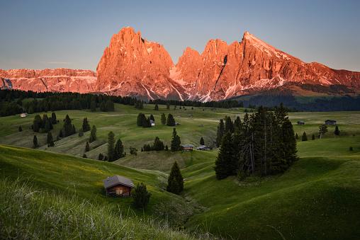 istock Seiser Alm, Dolomites, South Tyrol, Italy, Europe 1163797525
