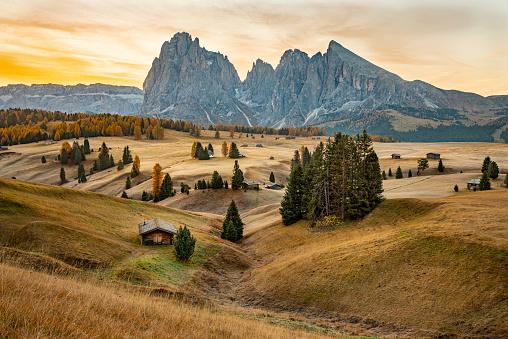 istock Seiser Alm, Dolomites, South Tyrol, Italy, Europe 1186773401
