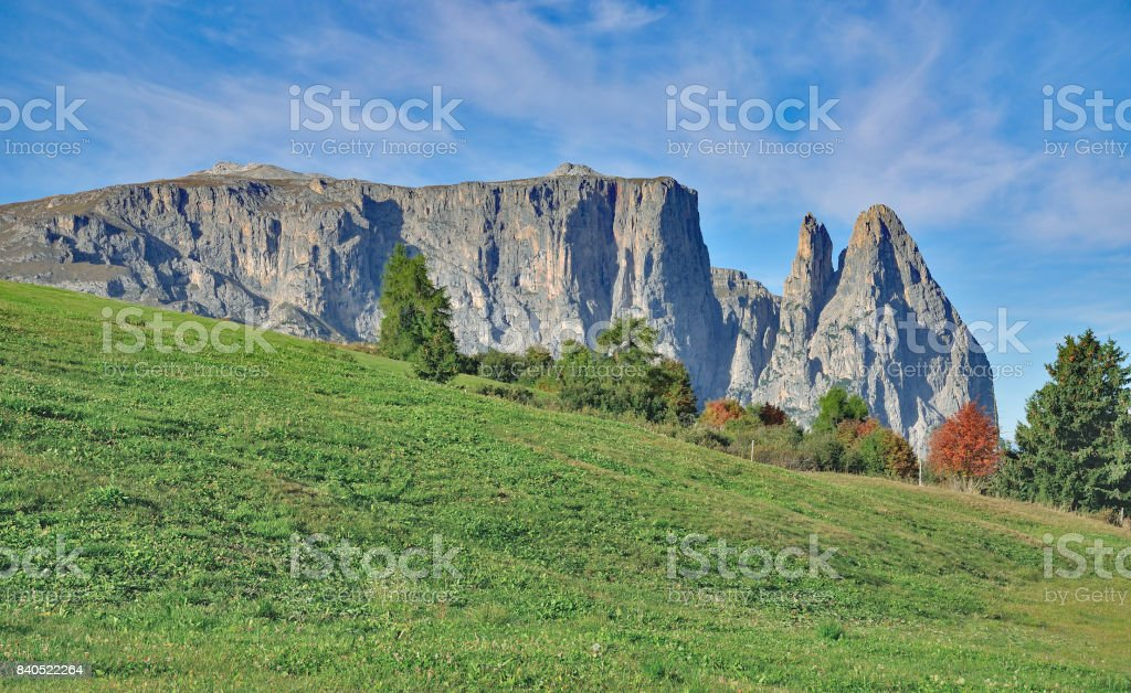Seiser Alm,Mount Schlern,Trentino,South Tirol,Italy stock photo