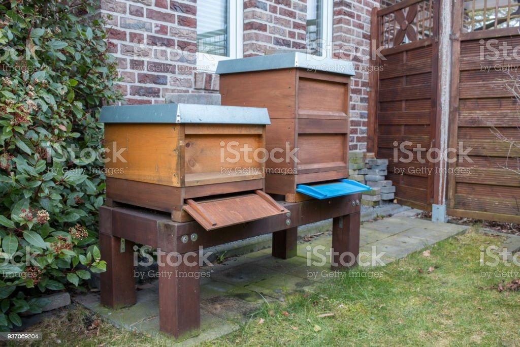 Seitenansicht von Bienenstöcken im Garten stock photo