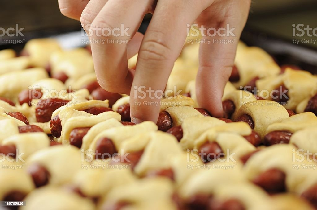 Selecting pig in a blanket royalty-free stock photo