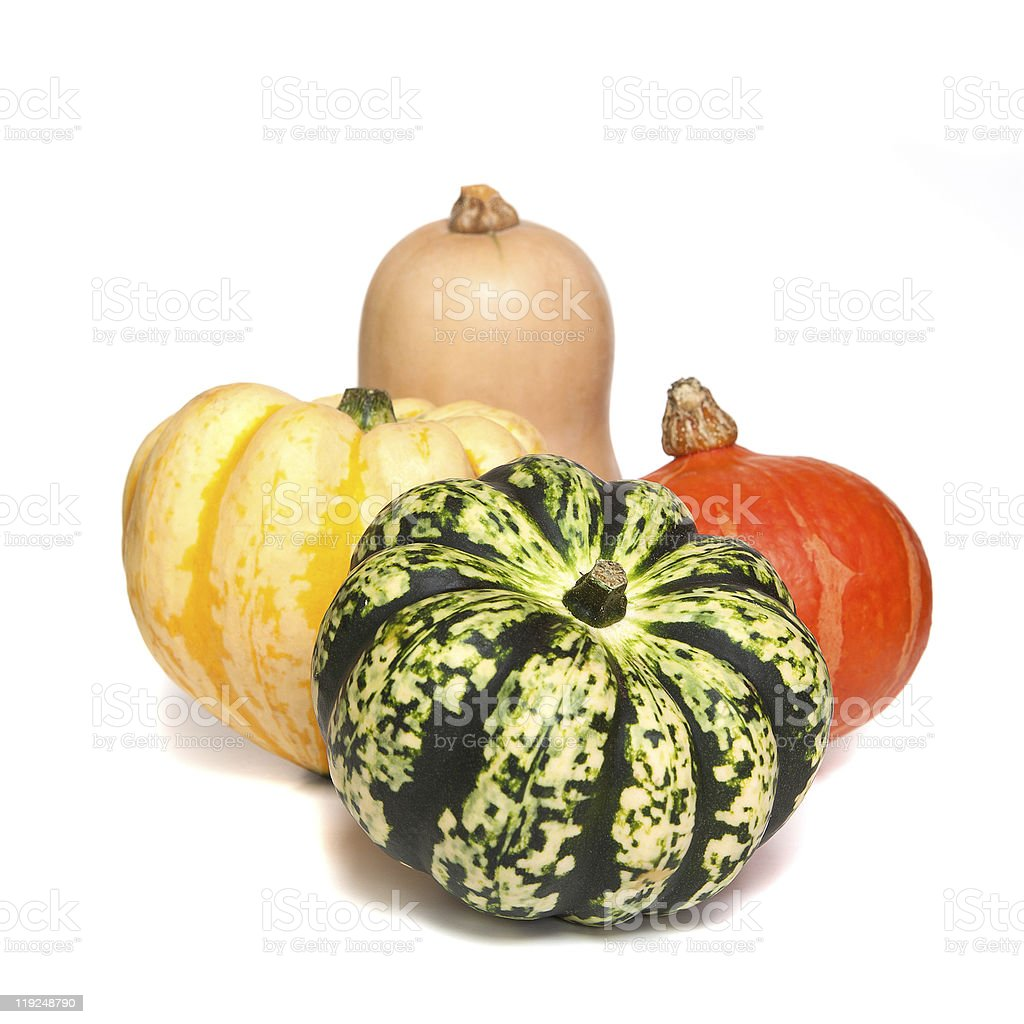 Selection of deorative gourds or squashes royalty-free stock photo
