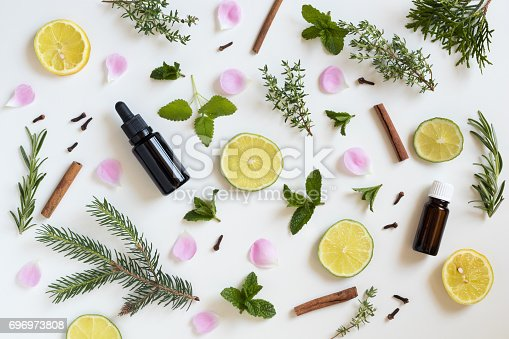 istock Selection of essential oils and herbs 696973808