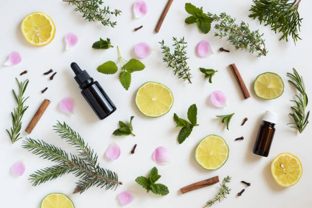 selection of essential oils and herbs - aromatherapy stock photos and pictures