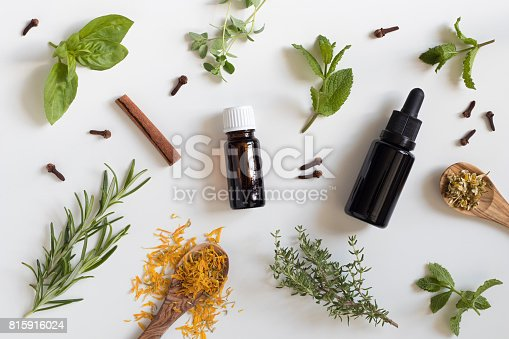 istock Selection of essential oils and herbs 815916024