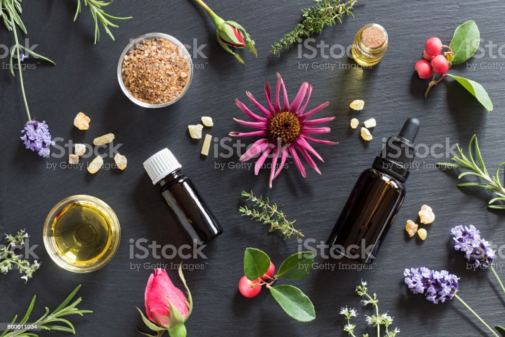 Selection of essential oils and herbs stock photo