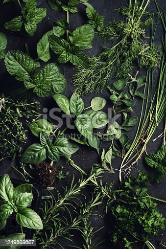 A selection of green herbs shot from overheads