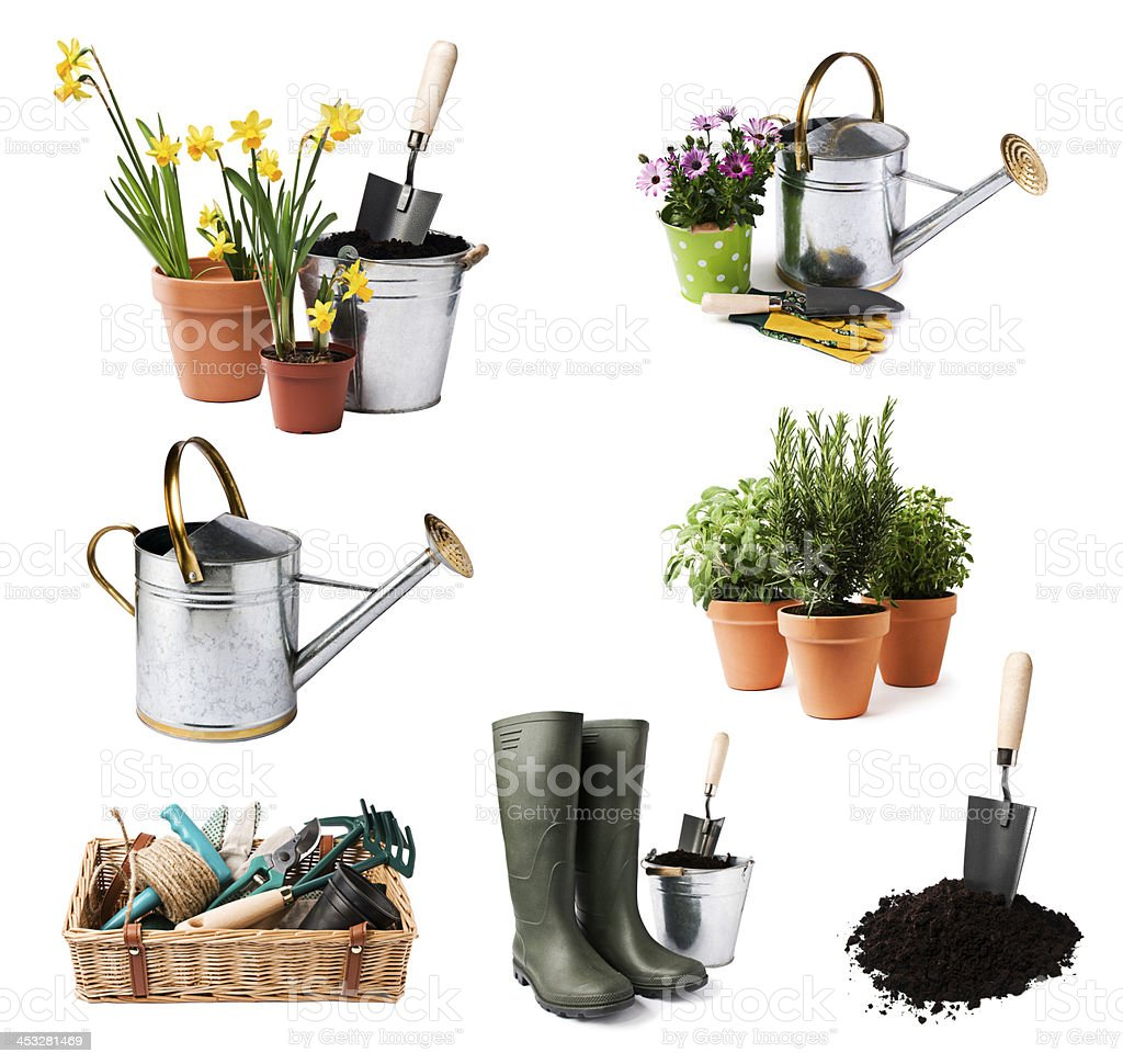 A selection of gardening tools and pots of plants stock photo