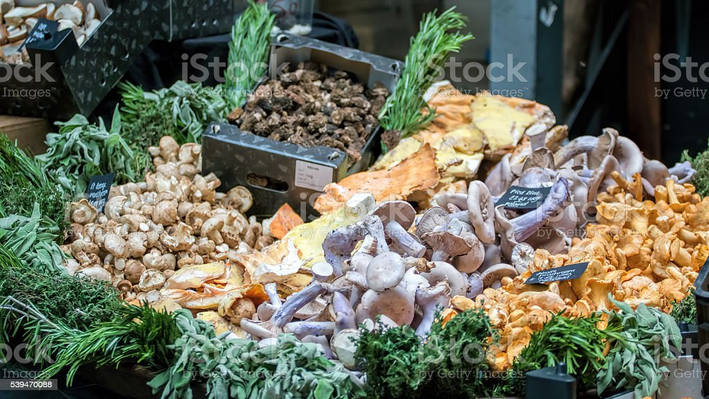 Selection of mushrooms for sale at market. stock photo