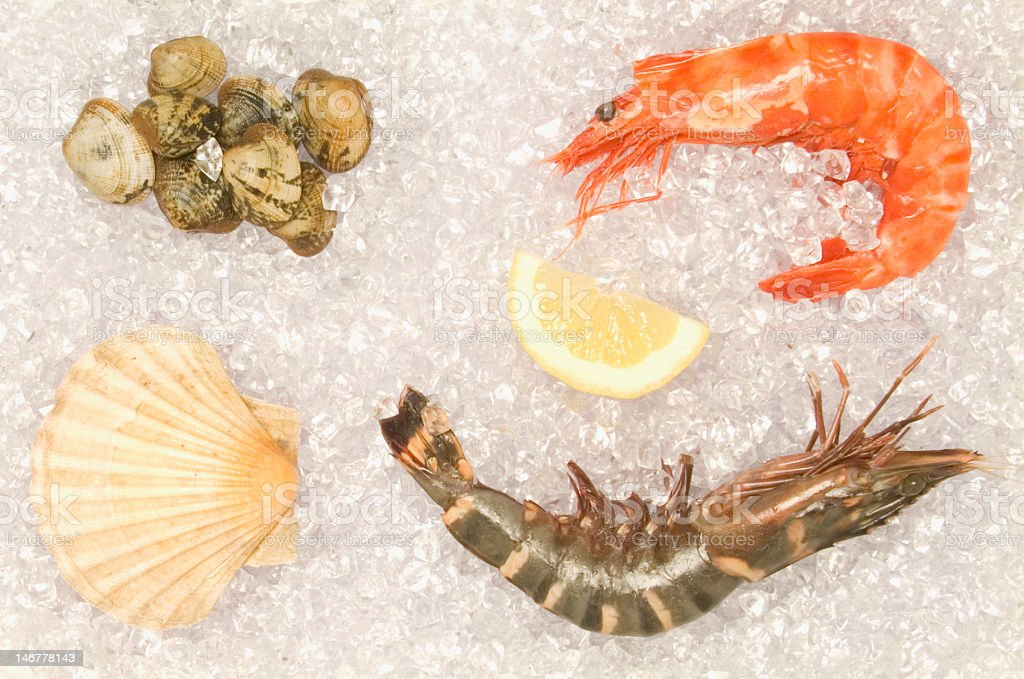 Selection of seafood on ice royalty-free stock photo
