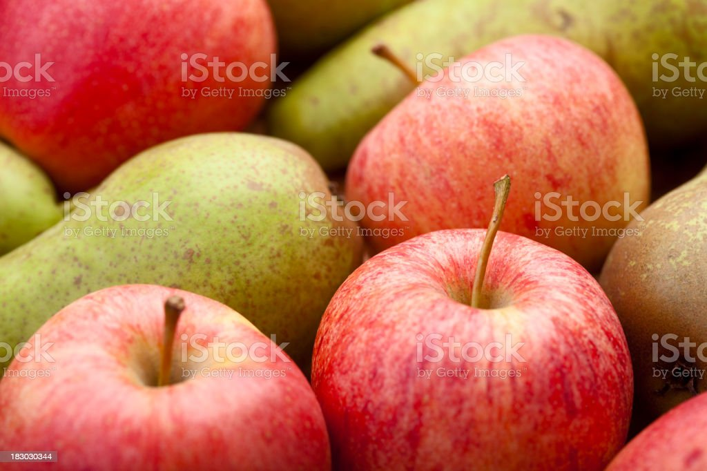Selection of summer fruits stock photo