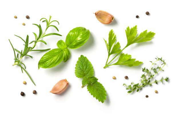 selectionof herbs and spices, isolated - liść mięty przyprawa zdjęcia i obrazy z banku zdjęć
