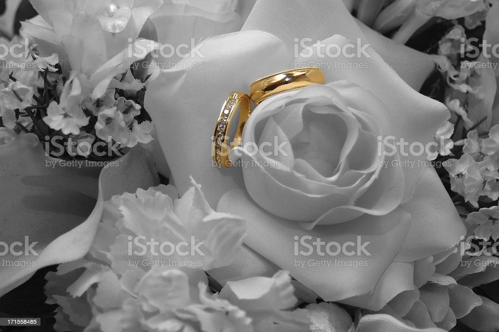 Selective Color Wedding Rings stock photo