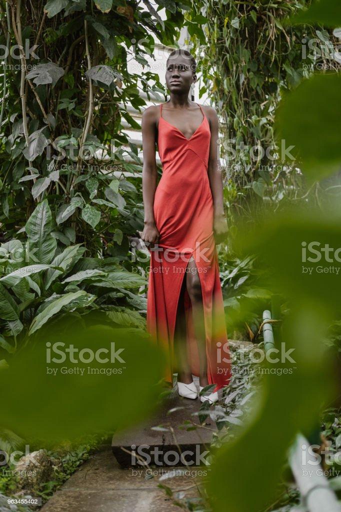 yeşil bahçe içinde kırmızı elbiseli çekici Afro-Amerikan model poz seçici odak - Royalty-free Afrika Kökenli Amerikalılar Stok görsel