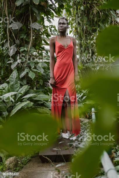 Yeşil Bahçe Içinde Kırmızı Elbiseli Çekici Afroamerikan Model Poz Seçici Odak Stok Fotoğraflar & Afrika Kökenli Amerikalılar'nin Daha Fazla Resimleri
