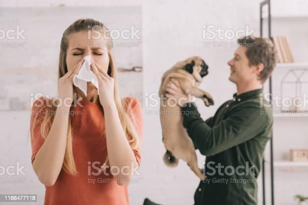 Selective focus of blonde girl allergic to dog sneezing in white picture id1166477118?b=1&k=6&m=1166477118&s=612x612&h=lx4  srwwouy 3bi5rvugvmqybtv4zg9jvumwsgfqxo=