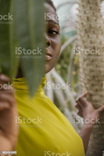Seçici Odak Bir Tropikal Yaprak Poz Zarif Afroamerikan Kız Stok Fotoğraflar & Afrika Kökenli Amerikalılar'nin Daha Fazla Resimleri