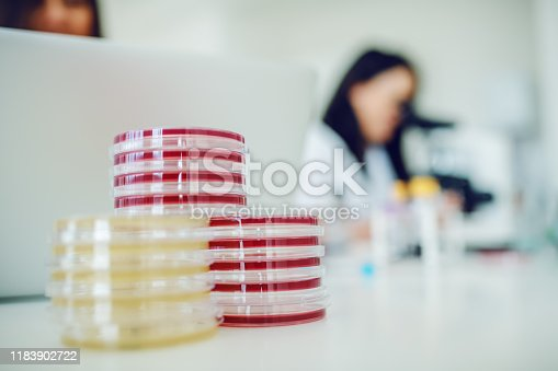 istock Selective focus on petri dishes on lab desk. In background is lab assistant doing tests. 1183902722