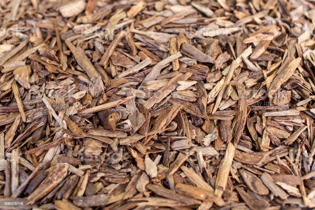 Mise au point sélective, bâtons de Agar bois ou bois d'agar fond The encens jetons utilisés par Burning pour encens & parfums des huiles essentielles comme l'Oud ou Bakhoor - Photo