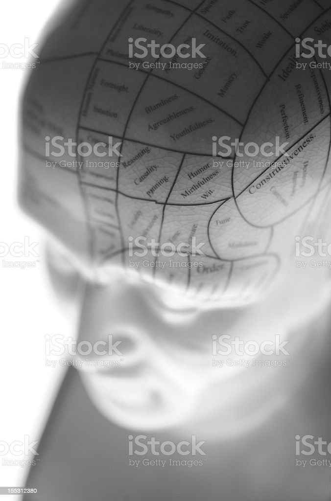 Selective focused Phrenology Head stock photo
