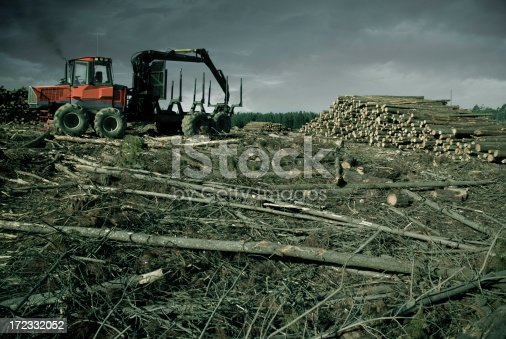 A large tractor idles at the edge of a forest it has almost destroyed.
