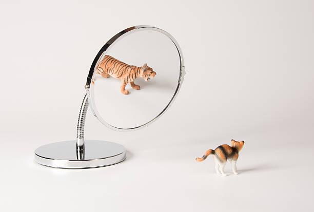 Selfconfidence front of the mirror cat picture id536716846?b=1&k=6&m=536716846&s=612x612&w=0&h=seqqqoxtbecsqy2f7eaysyjgxtqmyshpqbljcdz0gfw=