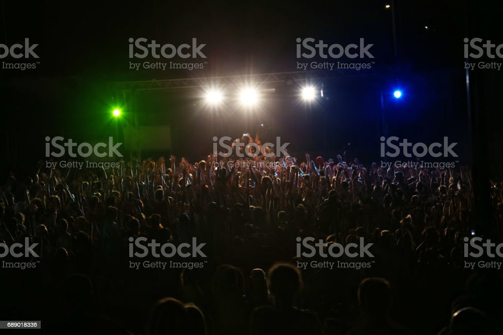 Selfie lors d'un concert en plein air - Photo