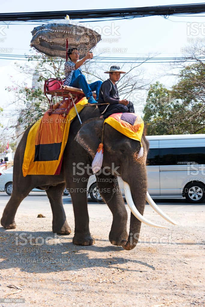 Selfie During Elephant Ride foto de stock royalty-free