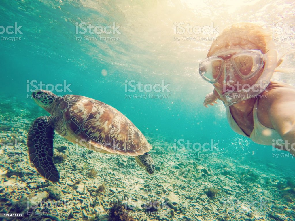 Selfie of girl with turtle underwater - Стоковые фото Gili Islands роялти-фри