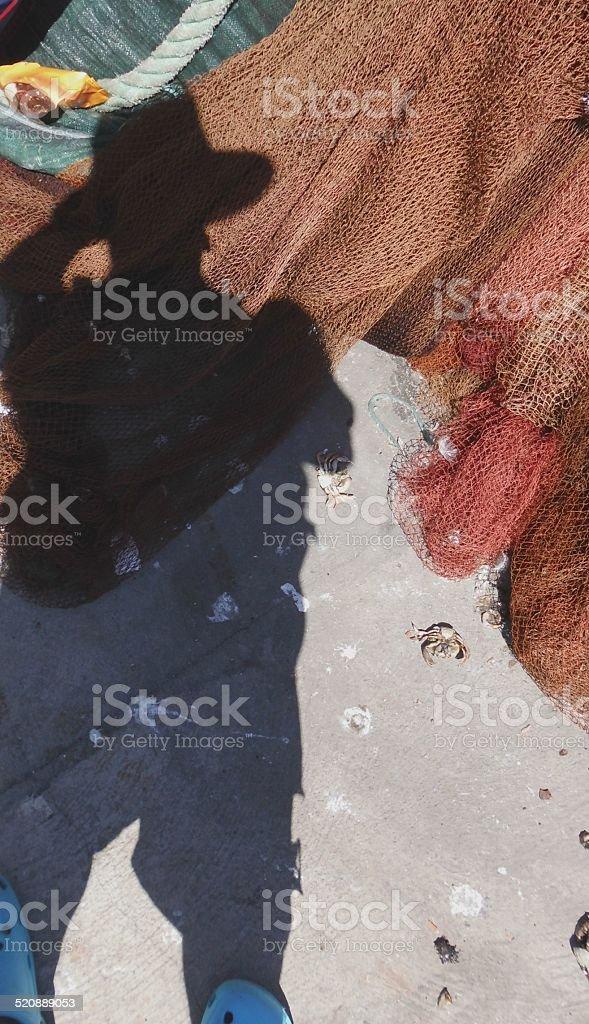 Selfie On The Dock Near A Net And Dead Crabs stok fotoğrafı