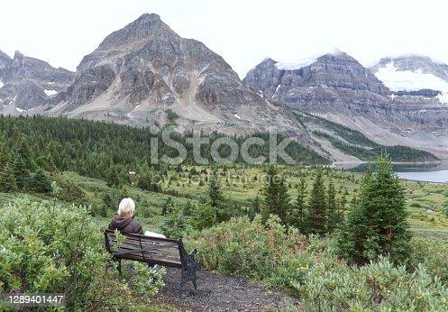 istock Self-isolation 1289401447