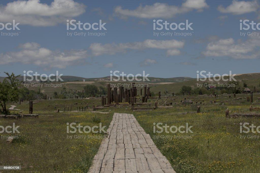 Seljuk Tombs Detail Ahlat, Bitlis, Turkey stock photo