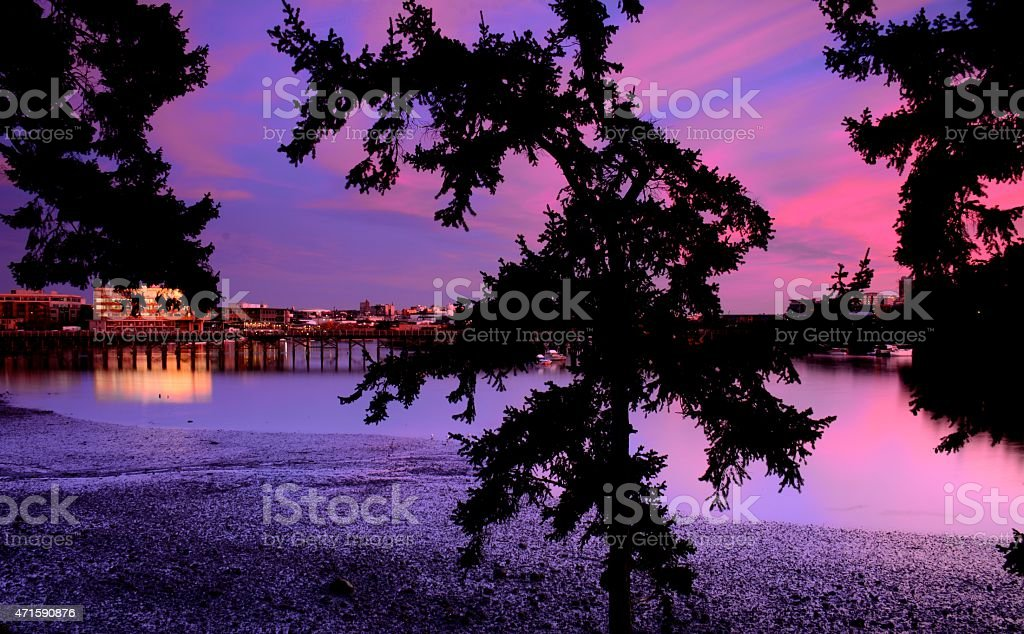 Selkirk Sunset royalty-free stock photo