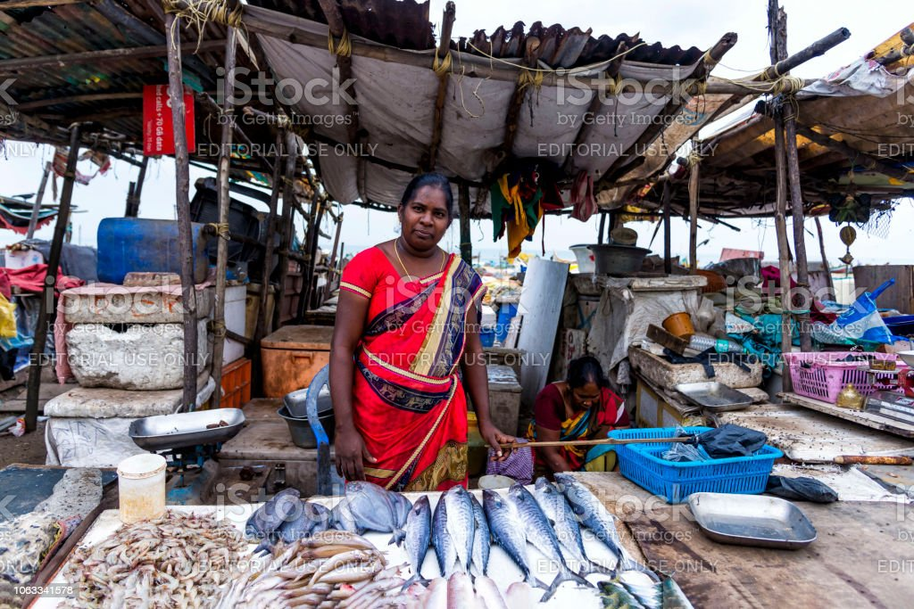5ae95ef5d3 Seller at the Chennai street fish market, India royalty-free stock photo