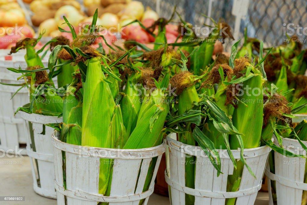 selling corn farmer's market royalty-free stock photo