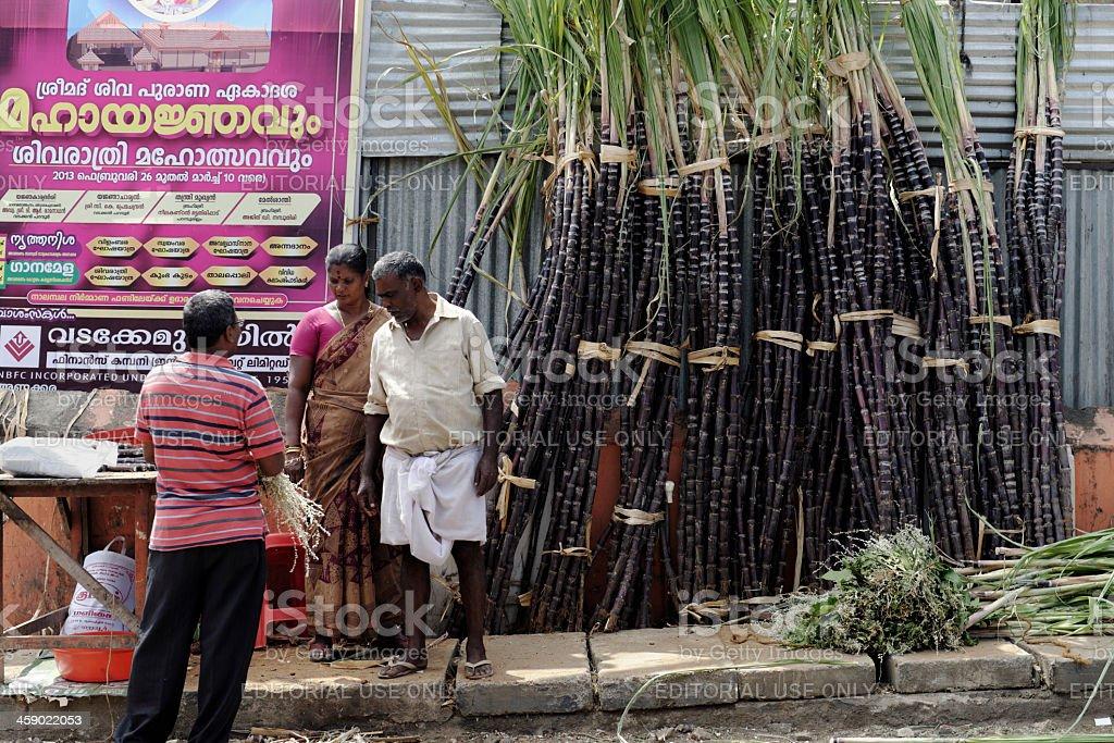 Selling sugar cane royalty-free stock photo