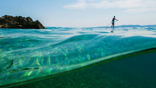 Semi underwater view on man floating on Paddleboarding (SUP). stock photo