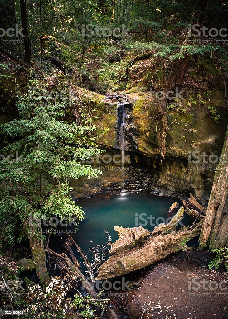 Sempervirens Falls, Big Basin Redwoods State Park royalty-free stock photo