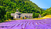 istock Senanque Abbey Gordes Provence Lavender fields Notre-Dame de Senanque, blooming purple-blue lavender fields Luberon France. Europe 1305974714