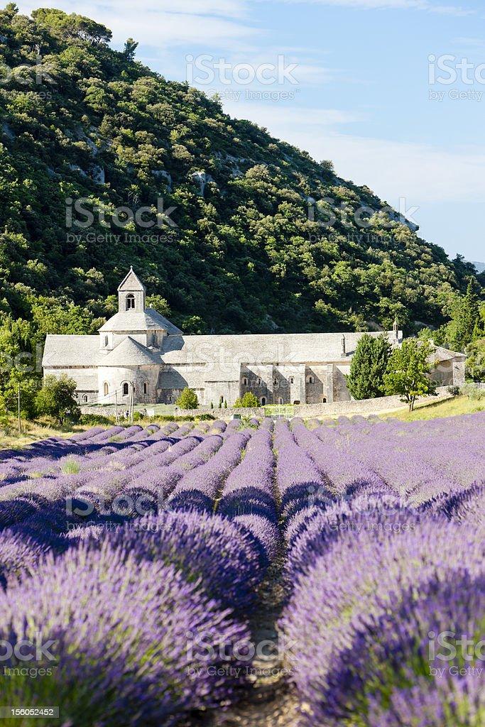 Senanque abbey royalty-free stock photo