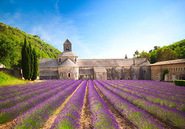 senanque abbey (provence, francja) - francja zdjęcia i obrazy z banku zdjęć
