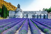 istock Senanque Abbey (Abbaye Notre-Dame de Senanque), Provence 524150699