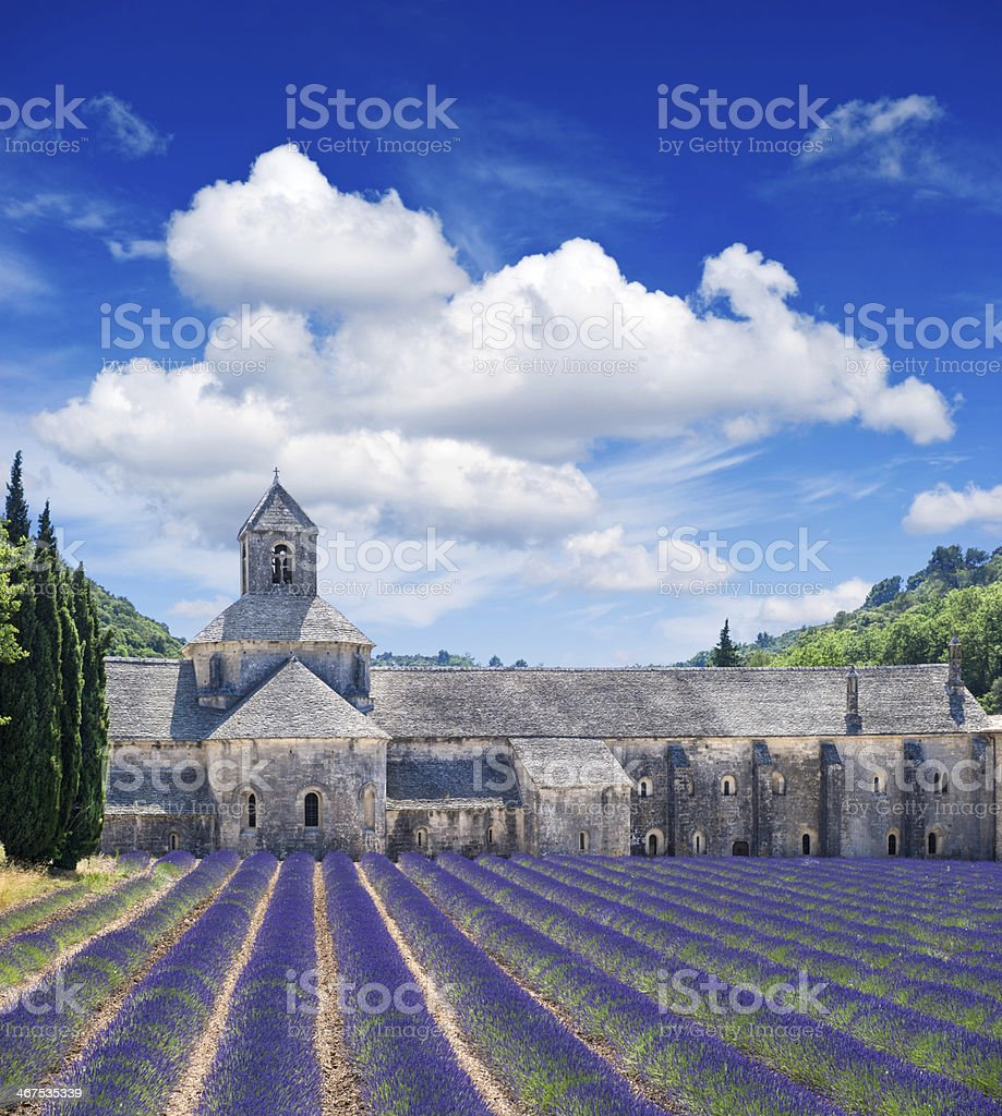 Senanque abbey with a lavender field stock photo