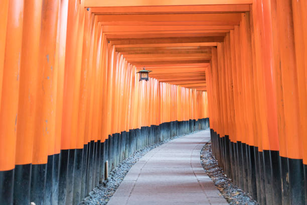 Senbon Torii Kyoto, Japan - January 24,2017: Vermillion red torii gateways are a famous feature of Inari shrines, and the color evokes a strong sense of spirituality for Japanese people. torii gate stock pictures, royalty-free photos & images