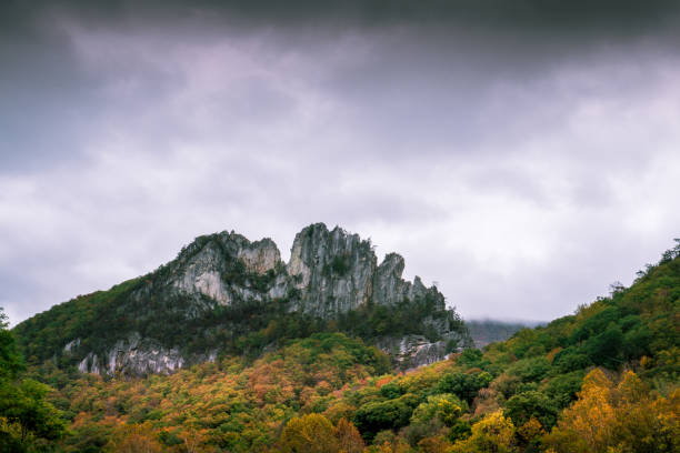 seneca rocks hispanic singles Pendleton county is a county located in the us state of west virginia  spruce knob-seneca rocks national recreation area (part) united states national radio quiet zone (part) national natural landmarks  089% of the population were hispanic or latino of any race.