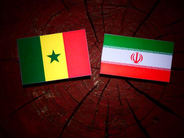 Bandeira do Senegal com bandeira iraniana no tronco de uma árvore isolada - foto de acervo