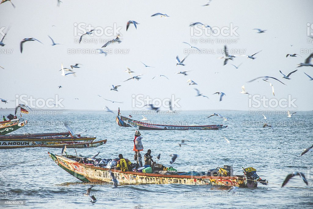 Senegalese and gambian fishing boats. stock photo