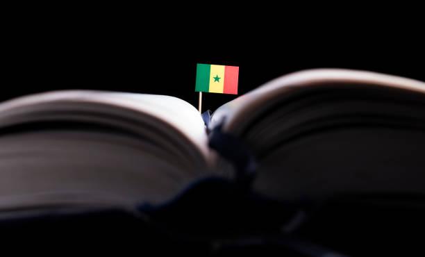 Senegalês bandeira no meio do livro. Conceito de conhecimento e educação. - foto de acervo